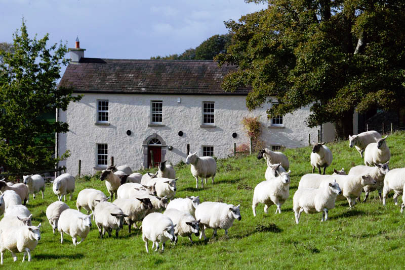 organic-farm-stays-westmeath-ireland-2